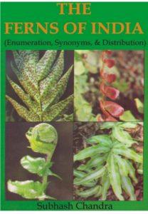 the-ferns-of-india-shubash-chandra