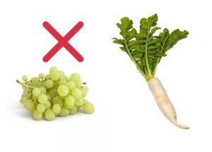 raddish-grapes-not-good-to-eat