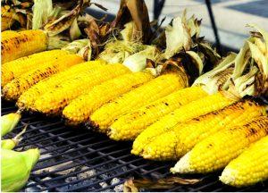 Corn-Rich-Protein-Diet