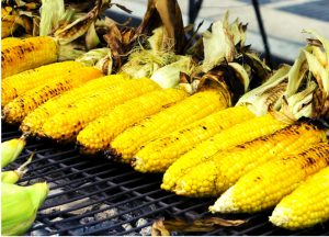 Corn-Rich-Protein-Diet