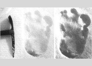 yeti-foot-print