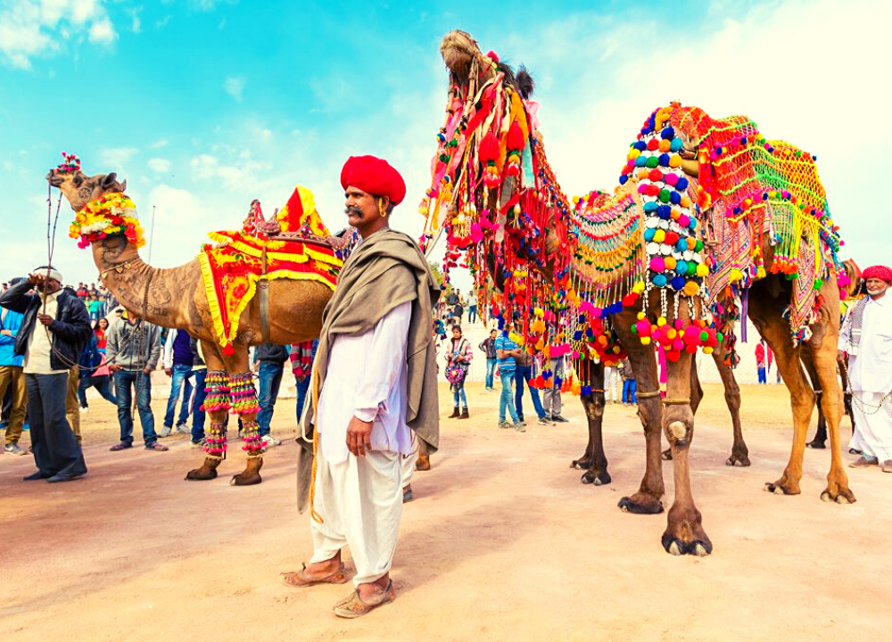 PUSHKAR CAMEL FAIR 2019